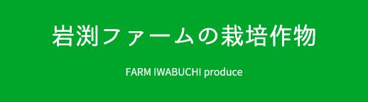 岩渕ファームの栽培作物 FARM IWABUCHI produce