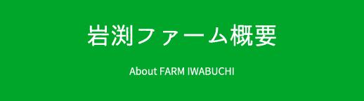 岩渕ファーム概要 About FARM IWABUCHI