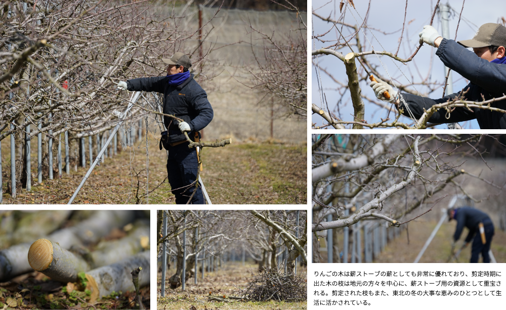 りんごの木は薪ストーブの薪としても非常に優れており、剪定時期に出た木の枝は地元の方々を中心に、薪ストーブ用の資源として重宝される。剪定された枝もまた、東北の冬の大事な恵みのひとつとして生活に活かされている。